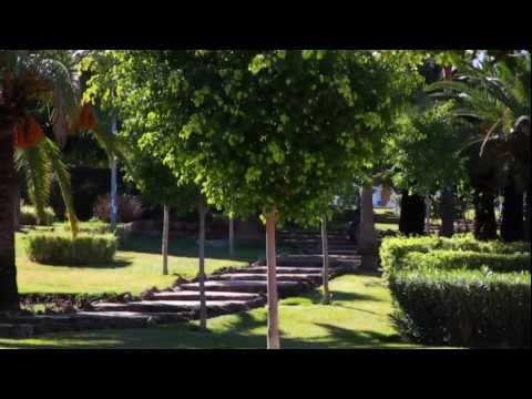Alhaurín de la Torre: De pasado fenicio y romano
