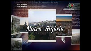 Notre Algérie | émission du 06-06-2021 Canal Algérie