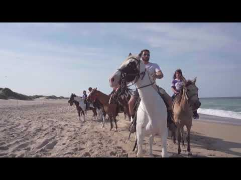 Virginia Beach Horseback - Outer Banks Location