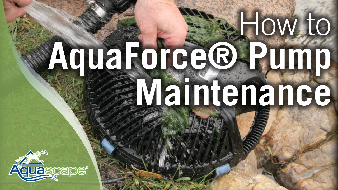Water fountain pump care - Aquascape S Paver Bubbler Fountain Kits