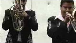 video y letra de Tengo celos  por Banda toro viejo