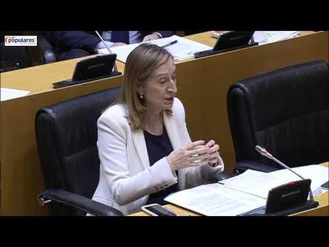 Intervención Ana Pastor en la Comisión para la Reconstrucción Social y Económica