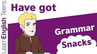 Grammar Snacks: Have got