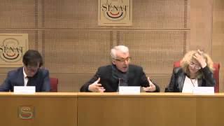 Video Audition de M. Michel LUSSAULT, Président du Conseil supérieur des programmes. MP3, 3GP, MP4, WEBM, AVI, FLV Oktober 2017