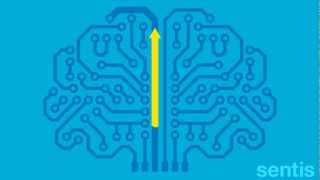 Learn to tame a noisy brain: Neuroplasticity