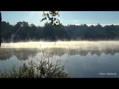 Медитация утро туман над водой поющие тибетские чаши Лайтовый фест 2015