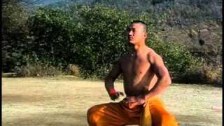 Nonton Shaolin Warrior Training Film Subtitle Indonesia Streaming Movie Download