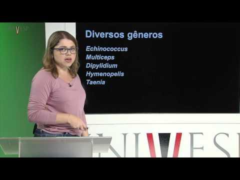 Zoologia de Invertebrados - Aula 7 - Platyhelminthes Parasitas
