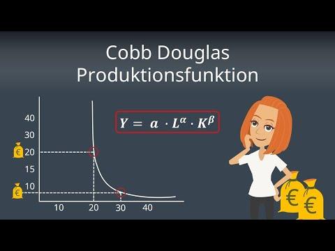 Cobb Douglas Produktionsfunktion - Berechnung und Ableitung einfach erklärt