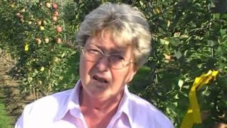#224 Prof. Dr. Christa Fischer im Interview