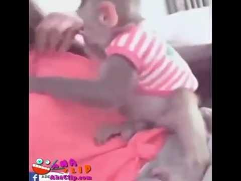 Chú khỉ thắc mắc, không biết con người mặc quần áo để che cái gì ấy nhỉ :3