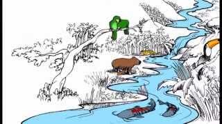 Conociendo nuestros espacios de vida - Plan Nacional de Cuencas