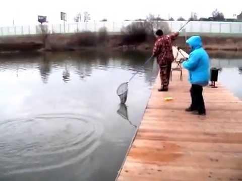 платная рыбная ловля  во  подмосковье у бородина
