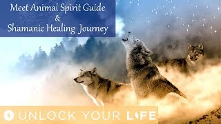 "This hypnosis session will guide you through meeting your spirit animal and will take you on a healing hypnosis journey where you will be able to release any negative ties and attract positive energy, raise your vibrations and accelerate your DNA evolution.As the world has recently entered a new cycle, you may feel that there is an even greater pull by negative energies to drag you down and the higher energies will elevate more, the toxic energies will go lower and drag down whoever and whatever they can with them.In this powerful meditation journey you will meet one of your spirit animals / power animals and together you will cleanse yourself of any negative energies or toxic ties to people, events or energies, and kick start a cycle of positive energy.Royalty free tracks ""Quietude"" and ""The Shaman"" by Christopher Lloyd Clarke, licensed by Enlightened Audio, available at enlighteneaudio.comThink Yourself Slim playlist: http://bit.ly/2dFmAM5Deep Sleep playlist: http://bit.ly/2dDf1oUPositive Daily Affirmations: http://bit.ly/2evKyqMSetting Boundaries and Assertiveness: http://bit.ly/2dTttYKHealing Hypnosis: http://bit.ly/2dWzBE2Self-Esteem playlist: http://bit.ly/2dOt9NFMeditations on Challenging Emotions: http://bit.ly/2oy6ckNSpiritual Hypnosis playlist: http://bit.ly/2dOtMXoIf you enjoyed day 1 of the Think Yourself Slim Program, you can get ALL 21 meditations, affirmations and coaching mp3s in the high impact 7 Day Think Yourself Slim Program here:http://www.thinkyourselfslim.com for just $69.90 USD, http://www.thinkyourselfslim.com/eu for just €59.99http://www.thinkyourselfslim.com/uk for just £49.99Get $5 off a minimum $25 purchase on all mp3s (excluding the Think Yourself Slim Program) by using code UYL5 at www.unlockyourlifetoday.comSubscribe to Think Yourself Slim's Youtube Channel:http://bit.ly/1NbGwlXConnect on Facebook and gain access to exclusive offers and the occasional mp3 gift: http://www.facebook.com/unlockyourlifetodayUnlock Your Life Mp3s on iTunes: https://itunes.apple.com/artist/unlock-your-life/id1034660915Think Yourself Slim MP3s on iTunes:https://itunes.apple.com/artist/think-yourself-slim/id1009734404-----------------------------------------------------You must be of adult age in your state, or country or gain caregiver or parental approval to listen. These recordings are intended for relaxation, self-improvement and entertainment purposes only.   Hypnosis is not a replacement for any counseling or psychotherapy.  These recordings do not diagnose, cure or prevent any mental or physical health condition or illness or prevent any illness or condition of the body or mind, they cannot tell you what will happen to you in the future.  If you think or know you have a health issue, talk to your doctor before listening to any part of this recording.  Never delay, change or stop any treatment, medication or regime without consulting with your doctor or health care professional first.  Never change your lifestyle, including but not limited to diet, exercise, sleep or anything else without consulting with your doctor first and following his or her advice. If you ever feel unwell at any time while listening to these recordings, you must seek immediate medical attention.  You should continue taking regular medical check-ups.If you know you have any kind of mental health issues, you should NOT buy or listen to any of our hypnosis recordings. If you wish the benefits of hypnotherapy, ask your counselor or therapist.By listening to this recording you confirm that you have checked any suspected or confirmed mental or physical health condition with a doctor and you accept full responsibility for all outcomes.  You understand that hypnosis is merely a process of suggestion and you can always accept or reject the suggestions you receive.  You are always in control.   All hypnosis is self-hypnosis.  Therefore we cannot guarantee, (a) that you will get any results at all or; (b), that any results you do get will be permanent.Please only ever listen to any of these recordings when you are in a quiet space, ideally at home or in a quiet room.  Never listen to any of these recordings while driving or operating machinery or when required to remain alert to your environment as you may become very relaxed and may even fall asleep.All recordings are best listened to on headphones.All scripts are unique and protected by copyright law by © Sarah Dresser 2015 / 2016 /2017 and may not be transcribed, re-used or re-recorded in part or whole whether for public or private practice use.  All recordings are also copyright protected and are not permitted for public broadcasting, or any form of paid or unpaid distribution other than for private, individual use.  These recordings may be removed or deleted at any time with no notice."