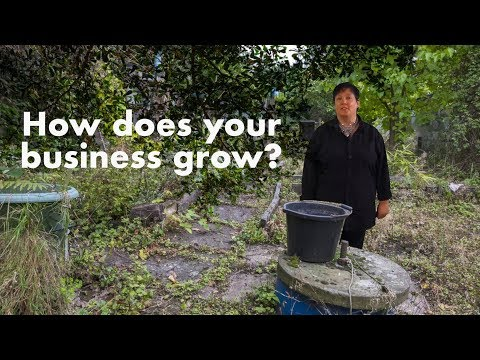 How does your business grow?