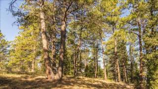 Golden (CO) United States  city photos : Land For Sale in Golden, Colorado, United States for USD 399,900