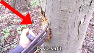 Video Lethal Ninja Weapons You'll NEVER Want to Encounter MP3, 3GP, MP4, WEBM, AVI, FLV Oktober 2018
