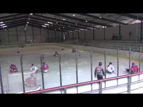 České Budějovice vs HC Sparta Praha sledge hokej