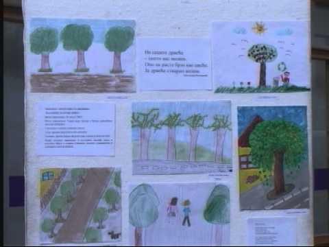 """Završena  radionica """"Kao prvo – razumi drvo"""""""