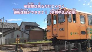 魅力いっぱいの企画列車!樽見鉄道を運転してみよう!編