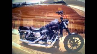 9. Harley Davidson 2009 FXDL Dyna Low Rider