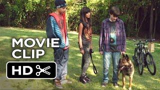 Nonton Max Movie Clip   Air Jordan Of Dogs  2015    War Dog Drama Hd Film Subtitle Indonesia Streaming Movie Download