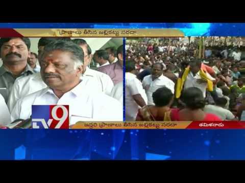 2 dead, 8 injured during jallikattu in Tamil Nadu