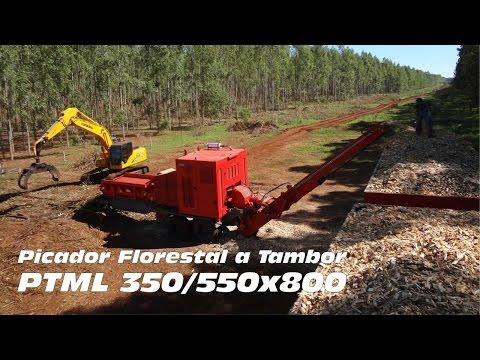 Picador Florestal PTML 350/550x800 - Picando árvores de eucalipto
