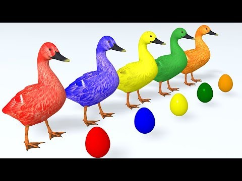 Learn Colors with Animals Cartoon for Children Ducks and Surprise Eggs  Learn Animal Name & Sound