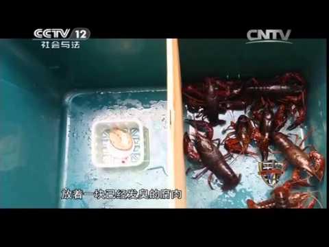 這樣的小龍蝦 你敢吃嗎