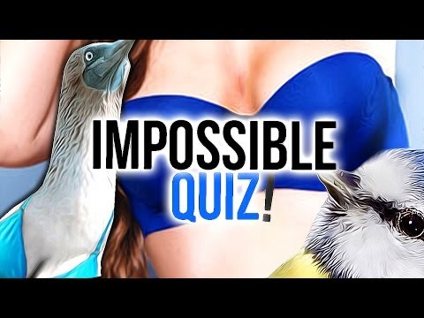 how to discover your purpose quiz