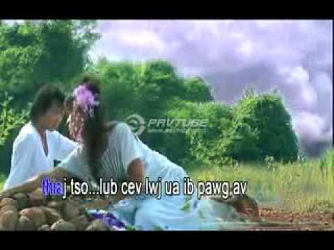 Kwm Lis paj txiv duab lub kua muag ntshav  001 (видео)