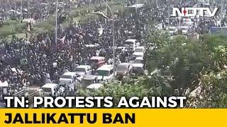 thousandsprotestatchennaismarinabeachinsupportofjallikattu