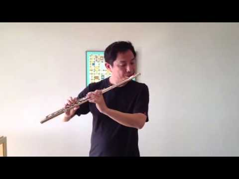 Sheherazade flute solo demon for SSMS Knowledge Management Video