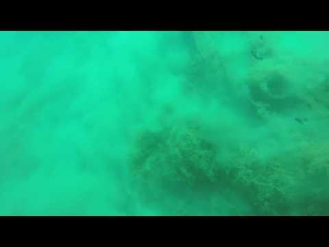 Így néz ki egy földrengés a tenger fenekén!