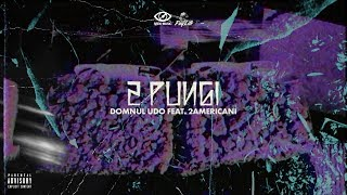 Download Lagu Domnul Udo - 2 Pungi (feat. 2americani) Mp3