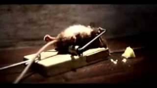 la souris !! - YouTube j aime trop cette pub pour fromage