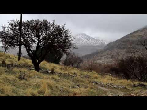 Delala Min – Grup 7 İklim