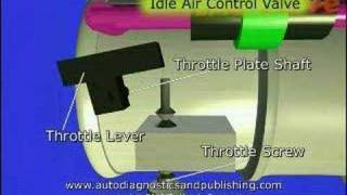 7. TPS or Throttle Position Sensor Adjustment 1