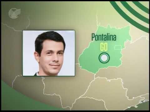 Pontalina (GO) tem 74 mil hectares de pastagens