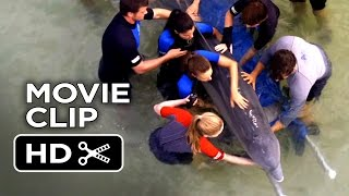 Dolphin Tale 2 Movie CLIP - We're Good Here Kyle (2014) - Morgan Freeman Dolphin Drama HD