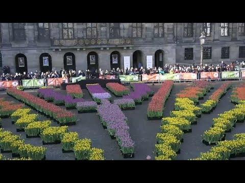 Ολλανδία: Γιορτάστηκε η Εθνική Ημέρα Τουλίπας