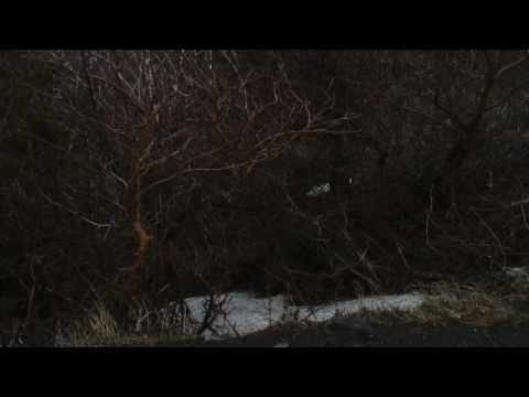 Minimovies - I Love Alaska - Episode 7/13