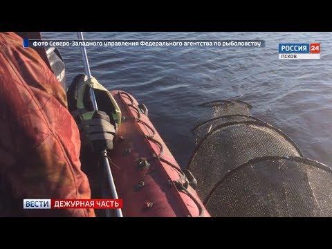 Браконьер нанес Теплому озеру ущерб на сумму свыше 200 тысяч рублей