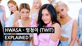 Video HWASA - 멍청이 (TWIT) Explained by a Korean MP3, 3GP, MP4, WEBM, AVI, FLV April 2019