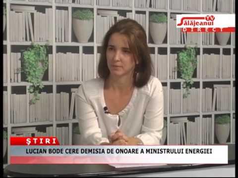 Lucian Bode cere demisia de onoare a ministrului Energiei, Constantin Niţă