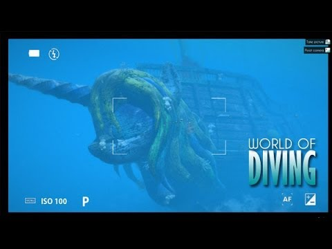 World of Diving — HMS Tranquility