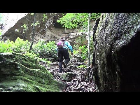 Hiking The Grotto. Bushwalk. Shoalhaven. Nowra NSW Australia.