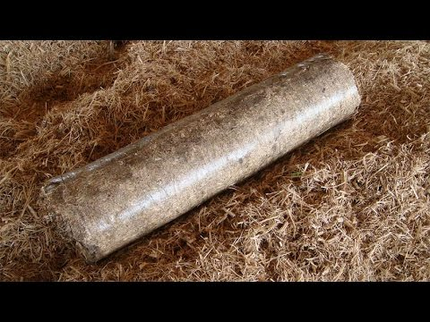 Briquetadeira produzindo briquetes dos resíduos da industria de moveis.