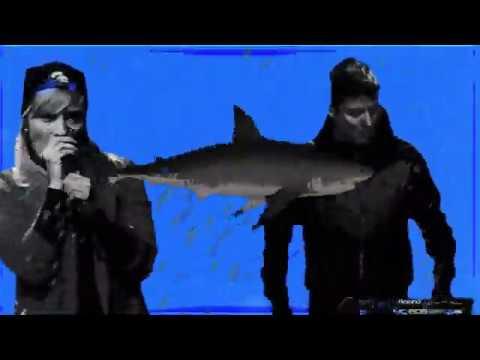 Bernays Propaganda & Stojche - Zloben Funk
